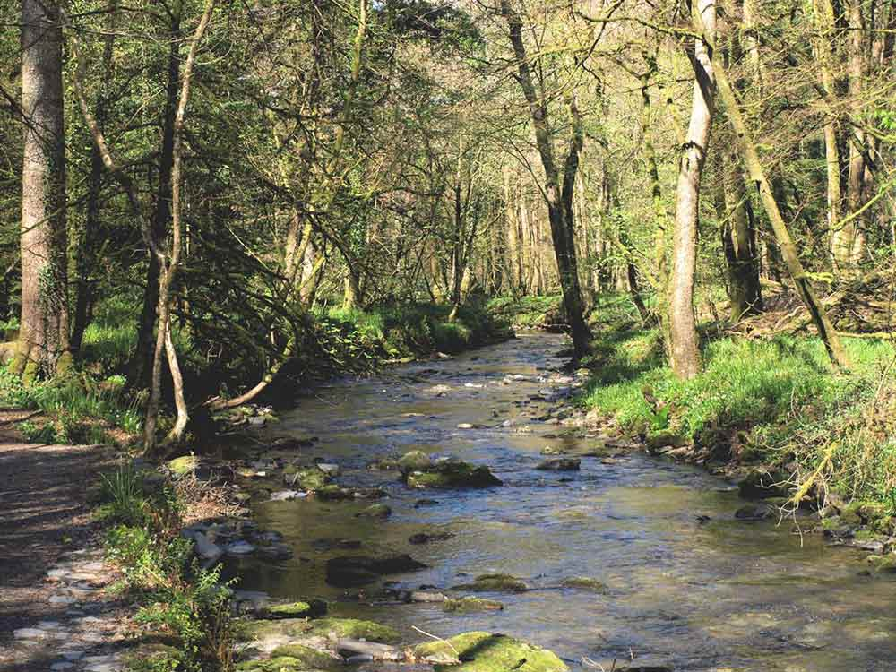 lydford gorge river medieval history